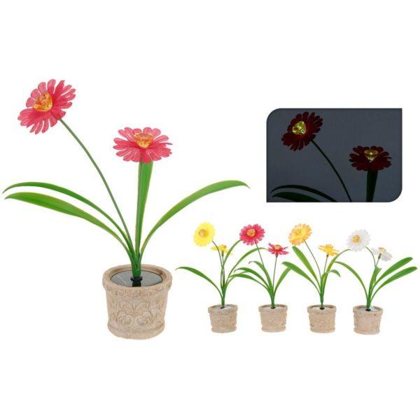 ProGarden 2 Solarbloemen in pot